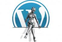 wp-robot-